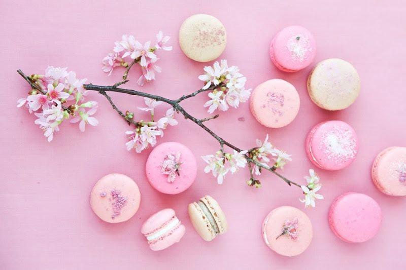 Piccoli Elfi | macarons
